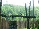 2006-2007-wycieczka-szlak-piastowski-56