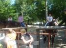 2007-2008-klewki-23