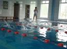 2007-2008-zawody-plywackie-ssp101-65