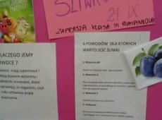 dzien_sliwkowy_005