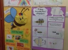 pszczolka_flora_023