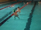 swimming_show_2017_022