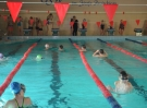 swimming_show_2017_023