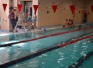 swimming_show_2017_030