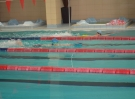 swimming_show_2017_040