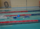 swimming_show_2017_043