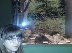 muzeum_przyrody_002