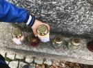 wizyta_na_cmentarzu030