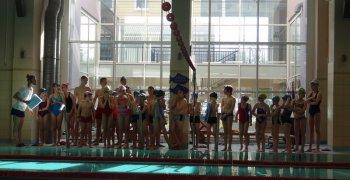 Swimming Show 2013
