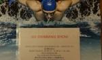 Zawody pływackie SWIMMING SHOW 2016