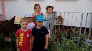Domek dla owadów – dla bacznych tropicieli i obserwatorów